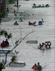 descriptive essays on hurricane katrina