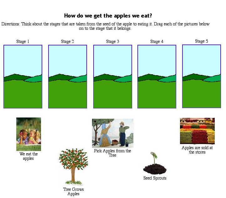 Free coloring pages of apple tree life cycle