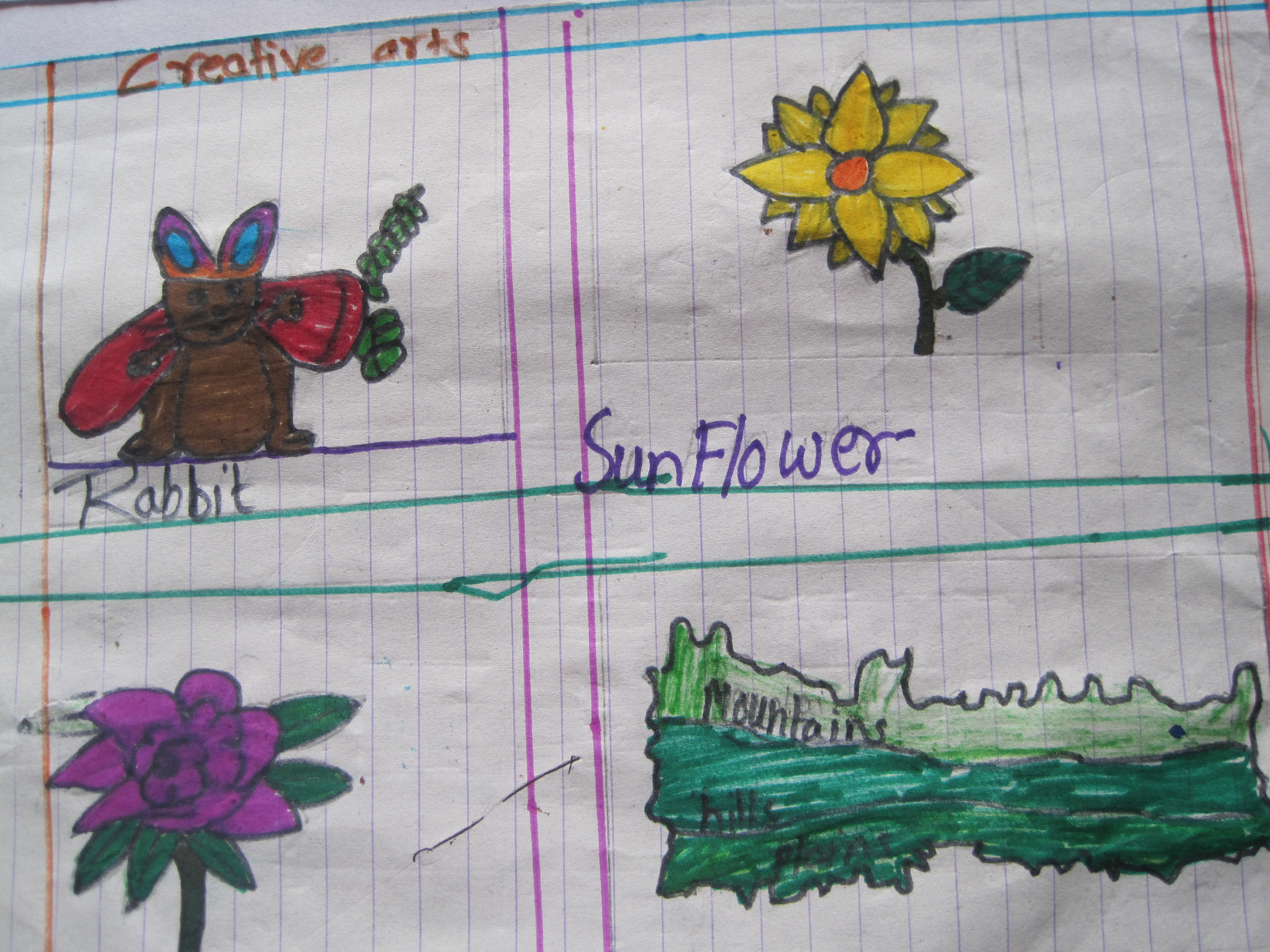 Drawings from 3rd Graders