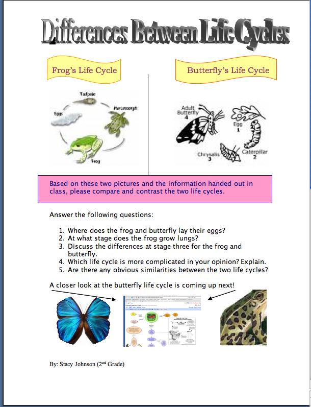 Popup_printable on Fly Worksheet